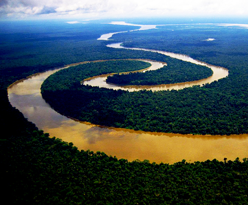 Peru-Amazon-Rainforest-